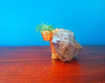 Jasper Stone Hand Painted Gold,Air Plant Holder,Rock Holder For Air Plants,Decorative Crystal,Naturally Found Pennsylvania Jasper,Tillandsia