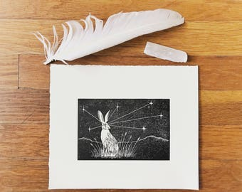 Jackrabbit with Star Strings
