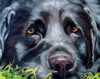 "LovelyLucy, custom Pet Portrait Oil Painting by puci, 12x12"""