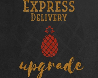 Express Delivery Upgrade (USA)