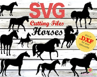 Horse SVG, Horses SVG, Cutting File Horses, SVG Horse, Italien Stallion, Black Stallion, Spirit Stallion, Mustang, Wild Horses