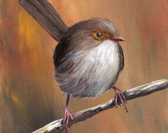Bird Art - Bird Painting - Female Superb Fairy Wren - SFA- Original Australian Wildlife Acrylic Painting - Bird lover Gift -  Realistic Bird