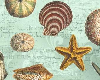 David Textiles fabric Seashells on Sage