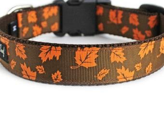Fall Dog Collar with Orange Leaves, Autumn Colors, Small Dog Collar, Brown, Thanksgiving Dog Collar - Autumn Leaves