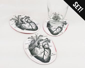 Anatomical Heart Coasters nurse gift idea coaster set medical home decor modern bar coaster homeschool gift cardiologist doctor gift anatomy