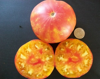 Heirloom Tomato- OAXACAN JEWEL - 85 day orange and red bicolor- Indeterminate - 25 seeds