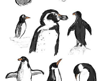 NEW! 'Penguins'