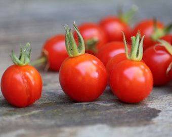 Red Cherry Tomato Seeds, organic heirloom seeds, kitchen garden pesticide free sun dried tomatoes organic seeds