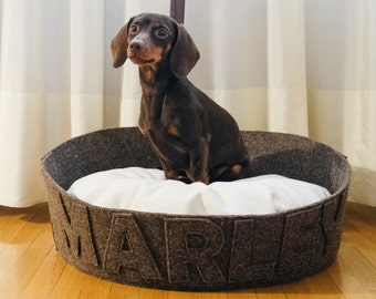 Felt dog bed Modern most popular dog bed Customizable with name Washable durable Dark brown