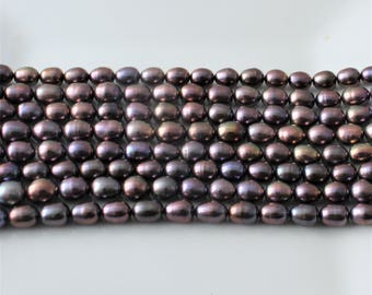 Gray Rice Pearls, Oval Pearls, Peacock Pearls, Freshwater Pearls, 5mm Pearls, Genuine Pearls,  Real Pearl Purple Pearls Full Strand RP415