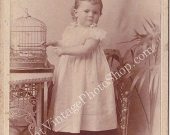 Vintage Cabinet Photograph Toddler Girl with Bird Cage