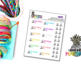 Doctor Appointment Planner Stickers   Repositionable Matte   SP14