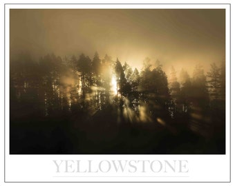 Limited Edition Sunbeams - Yellowstone NP -Signed