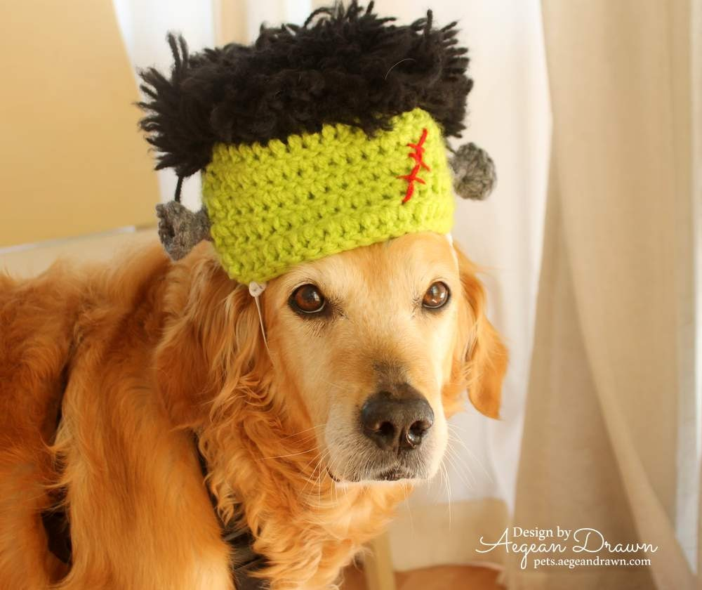 Frankentstein Hat for Dogs Halloween Costume for Large Dogs