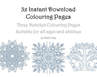 3x Colouring Pages For all Ages - Highly detailed. Instantly downloadable digital colouring pages. Prints at 10x7.5 inches for best results.