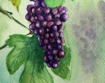 Purple Grapes On a Vine - 5x7 Original Watercolor Painting - Kitchen wall art