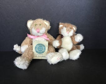 Pair Boyd's Bear Cats