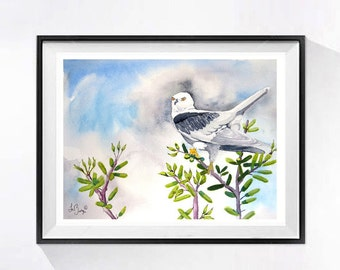 Nature painting, Sale, Hawk painting, Bird artwork, Bird painting, Original watercolor painting, Birds of prey, White Tail Kite, 9 x 12 in.