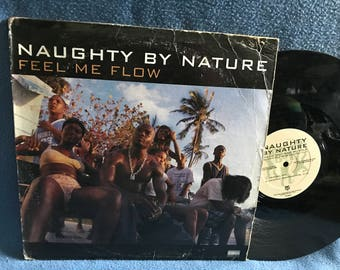 "Vintage, Naughty By Nature - ""Feel Me Flow / Hang Out And Hustle"", Vinyl LP Record Album, Original Firs tPress, Hip Hop, Poverty's Paradise"