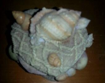 Seashell/Beach Box