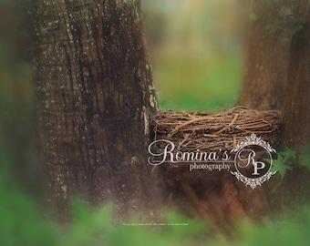 Digital Newborn Backdrop/Nest/Digital Outdoor Prop/Birdnest digital prop/newborn background/green woods/digital download