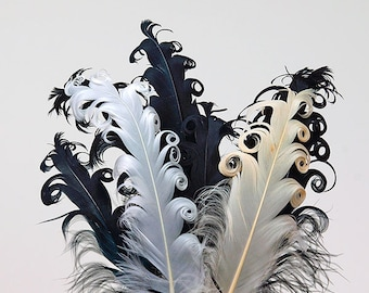 Feathers black or white curly feathers craft feathers embellishments
