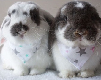 Stars bandana or bow for bunny rabbits, guinea pigs, small pets - grey and mint jade or pink stars