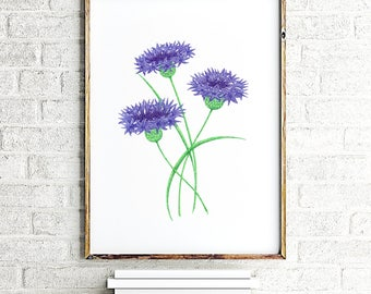 Botanical art print, navy wall decor, flower paintings, Cornflower illustration, flower wall art, baby girl nursery poster by JurgaDream
