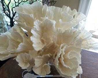 Large White Coral Sculpture Vintage Authentic Coastal Style Ocean Display Floral Wave Blooms Cluster Beach Living Home Office Aquarium Decor