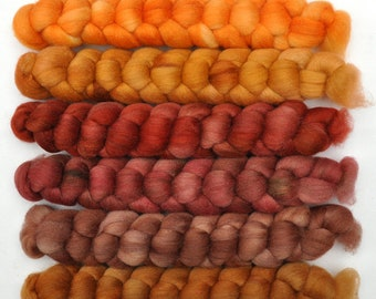 Hand dyed roving -  Silk / Merino wool 20/80% spinning fiber - 6.4 ounces - Gathering Firewood