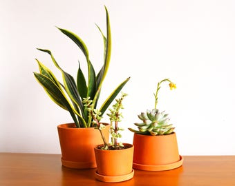 Terracotta mini planters - B set - Set of 3