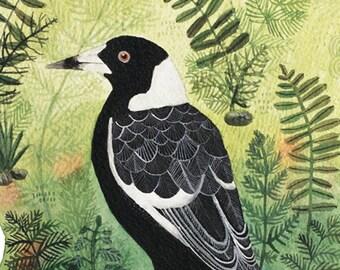 Magpie Art Print 8x10