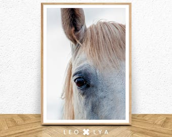 White Horse Print, Animals Wall Print, Printable Horse, Pastel Print, Digital Download, Modern Minimalist, Boys Room Decor, Colour Photo