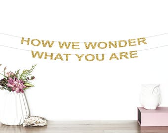 How We Wonder What You Are Glitter Banner | Twinkle Twinkle Little Star Banner | Birthday Banner | Baby Shower Banner | Party Decor | Gold