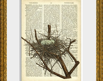 NEST with 4 BLUE EGGS - old book page art print - upcycled antique dictionary page with an antique nest illustration - vintage home decor