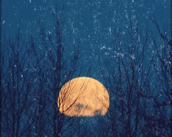 Breathe- Golden Full Moon Rising, moon behind trees, blue sky, textured moon photo, grungy moon art, metaphysical pagan art, moonrise
