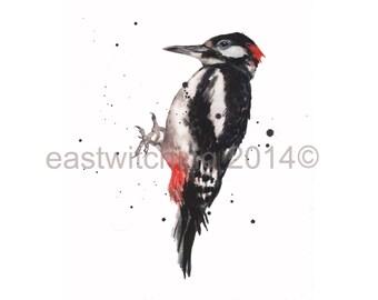 Peintures, impression de 8 x 10, aquarelle de pic, pic Art, oiseau estampes, oiseaux