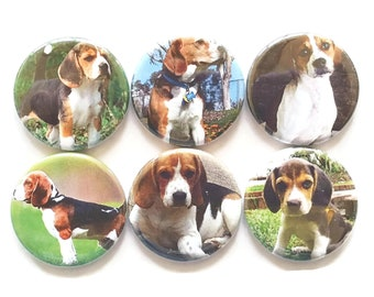Dog Magnets, Beagles Dog Magnets, Beagle Puppies, Fridge Magnets, Dog Gift, Dog Lover Gift, Kids Magnet Set, Beagle Dog Gift, 6/Set