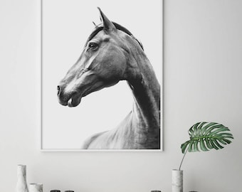 Horse print, horse photo, Black & white horse print, Animal wall art, Scandinavian wall art, Horses photography , Large horse print