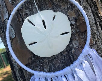 Simple white sand dollar dream catcher