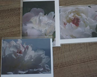 Set of THREE Assorted Peony Note Cards