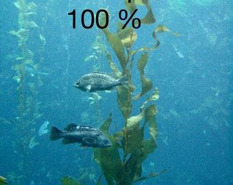 Marine Seaweed /Sea Kelp Gel, Cosmetic Ingredient,use 100 % as eye gel,