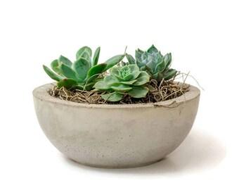 Mother's day, Mother's day gift ideas, Concrete Bowl, Concrete Planter, Succulent Plant Pot, Succulent Planter, Succulent Bowl, Gift idea