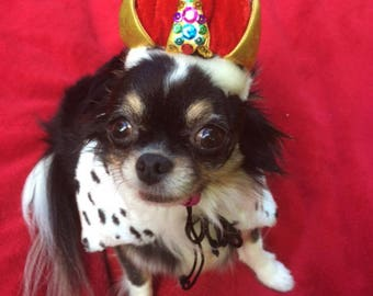 Dog_Cat Birthday Crown -Cat_Dog Crown hat -Cat_Dog Birthday Party Crown -The Crown Jewels- with reversible dalmatian leopard print collar
