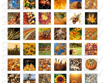 Autumn Harvest - 2 sizes - Inchies AND scrabble tile size .75 x .83 inch - Digital Collage Sheet - INSTANT DOWNLOAD