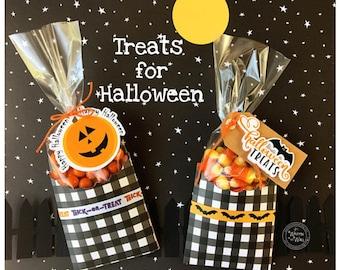 KIT Halloween Bat & Pumpkin Treat Bag, Party favor, Co-Workers Treats, Gifts for Teacher, Employee Treats, Classroom, Client Gift Baskets
