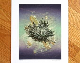 Drift - Fine Art Print