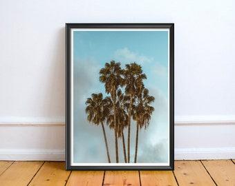 Palm Tree Sky,Art,Photo,Digital,Download,Decor,Home,Office,Tree,Nature,BabyShower,Coast,Coastal