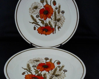 2 x Meakin studio 'Poppies' dinner plates