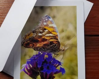 Butterfly Enjoying Some Nectar, photo greeting card, blank